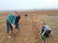 Eskişehir'de Kadın Çiftçiler İçin 'Lavanta' Alternatif Ürün