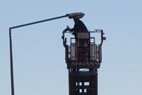 Sokak Lambasına Takılan Güvercini İtfaiye Kurtardı