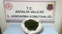 Antalya'da 3 Şüpheli, 3 Kilo Esrarla Yakalandı
