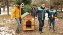 Odunpazarı Belediyesi 'Sokaktaki Dostlar' İçin Kulübe Yaptı