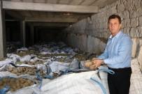 Patates Üreticileri Borç Erteleme İstiyor