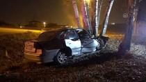 ALPARSLAN TÜRKEŞ - Şarampoldeki Ağaca Çarpan Otomobilin Sürücü Öldü