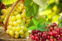 GÜNEY DOĞU - Yaş Meyve Sebze Ve Mamulleri UR-GE Projeleriyle Hedef Pazarlara İhraç Edilecek