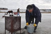 KUŞBURNU - Donan Çıldır Gölü Üzerinde Soba Yakıp Çay Demliyor