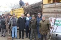İnönü'de 15 Bin Meyve Fidanı Dağıtıldı