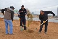 AHİ EVRAN ÜNİVERSİTESİ - KAEÜ'sinde Ağaçlandırma Çalışmaları