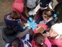 EVCİL HAYVAN - Öğrenciler Evcil Hayvan Parkını Gezdi