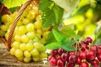 GÜNEY DOĞU - Yaş Meyve Sebze İhracatçıları Hedef Pazarlarını Belirledi