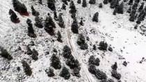 Antalya'nın Alacabel Mevkisinde Kar Yağışı Etkili Oldu