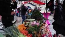 AMSTERDAM - Hollanda'da Çiftçilerden Hükümetin Tarım Politikasına Protesto