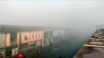 YAKIN TAKİP - Sakarya'da Sis Nedeniyle Görüş Mesafesi 20 Metreye Düştü