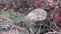 YUNUSLAR - Yunus Emre'nin Mezarının Mengen'de Olduğu İddiasıyla İnceleme Yapıldı