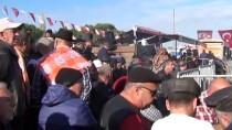 KAMYONCULAR - Ayvalık'ta Deve Güreşi Festivali