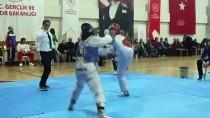 ŞEHADET - Silivri'de Şehitler Anısına Tekvando Turnuvası Düzenlendi