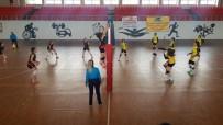 YILDIZ ANADOLU - Van Kadın Voleybol Takımı Mardin'den 3 Puanla Döndü