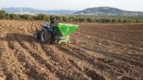 YERLİ TOHUM - Akhisar'da Yerli Tohumlar Toprakla Buluşuyor