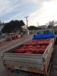 Erdek'te 2 Ton Kaçak Midye Ele Geçirildi
