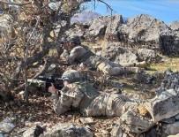 Bitlis ve Siirt'te 'Kıran-8 Sehi Ormanları Operasyonu' başladı