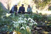 Kumluca'da 400 Metre Rakımda Kardelen Çiçeği Şaşkınlığı