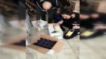 Alanya'da Yılbaşı Öncesinde 2 Bin 484 Şişe Kaçak Ve Sahte İçki Ele Geçirildi