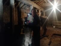 Arpaçay'da Çalınan Hayvanlar Bayraktar Köyünde Bulundu