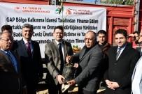 Artuklu'da Çiftçiye 46 Bin Fıstık, Badem Ve Ceviz Fidanı Dağıtıldı