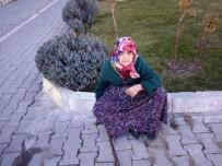 AHŞAP EV - Bir Haftada Eşini Kanserden Kaybetti, Evi Yandı, 78 Yaşında Yarı Felç Sokakta Kaldı