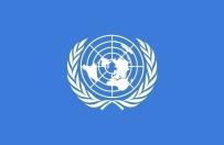 KUZEY KORE - BM Genel Kurulu'ndan Kuzey Kore kararı