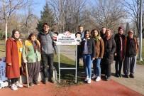 Bolu Belediyesi Açık Havada Tütün Kullanmaya Karşı Uyarıcı Tabela Astı