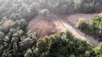 Büyükada'da İtlaf Edilen Atların Gömüldüğü Dev Çukurlar Havadan Görüntülendi