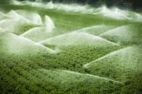 1 EKİM - Yağmurlama Sulamada Yüzde 35, Damla Sulamada Yüzde 65 Su Tasarrufu Sağlandı