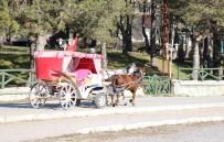 HAFTA SONU TATİLİ - Abant Tabiat Parkı'na Gelen Tatilcilerde Ruam Hastalığı Endişesi