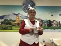 CANAN KARATAY - Karatay Açıklaması 'Cahilliğe Bağlıyorum'