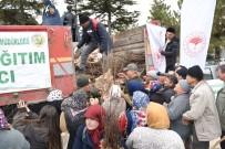 Eskişehir Orman Bölge Müdürlüğü 100 Bin Ceviz Fidanı Dağıttı