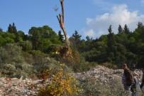 HARMANDALı - İzmir'de Ormanlık Alana İnşa Edilen 7 Ev Yıkıldı