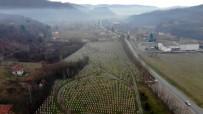 SREBRENITSA - (Özel) Srebrenitsa Annesinden Nobel Ödüllü Yazara Açıklaması 'Katliamın Kanıtı İşte Bu Mezarlık'