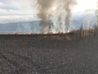 EKMEK TEKNESI - Eber Gölü'ndeki Sazlıkta Yangın