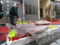 Marmara'da Yakalandı Açıklaması 3.5 Metre Boyunda, 120 Kilo Ağırlığında