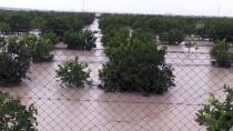 MEHMET AKıN - Adana'da Tarım Arazileri Yağmur Sularının Altında Kaldı