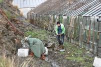 Alanya'da Yağmur Ve Fırtına Seraları Vurdu