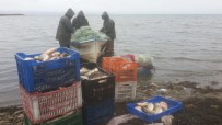İznik Gölü, Nesli Tükenen 'Kepekleme' Balığı Kaynıyor