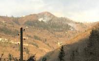 ORMAN ALANI - Örtü Yangınları İle İlgili Valilik'ten Bir Açıklama Daha Geldi