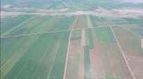 YAKIT TASARRUFU - Diyarbakır'da 40 Bin 550 Dekar Alan Toplulaştırıldı