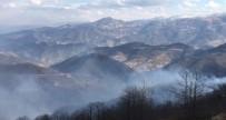 Trabzon'daki Örtü Yangınları Devam Ediyor