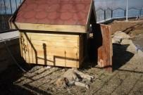 YıLDıRıM BEYAZıT - Atık Malzemeden Sokak Hayvanlarına Sıcak Yuva
