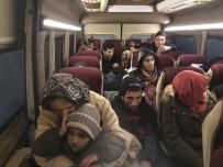 ZEYTINLIK - Çanakkale'de 100 Mülteci Yakalandı
