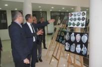 FOTOĞRAF SERGİSİ - Elazığ'da 'Harput Kazı' Sergisi
