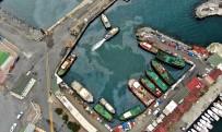 EKREM İMAMOĞLU - Marmara Denizinde Çevre Kirliliği