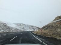SIYAH BEYAZ - Ağrı-Erzurum Arasında Siyah Beyaz Yolculuk