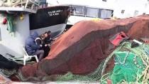 MARMARA DENIZI - Tekirdağlı Balıkçıların Yeni Yıldan Umudu 'Hamsi'